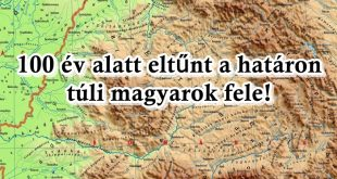 fogy a magyar