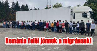 Ebben a kamionban 44 migráns próbált bejutni Magyarországra!